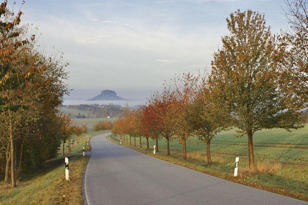Landstraße und Lilienstein im Herbst, Sächsische Schweiz, Sachsen / ch193647