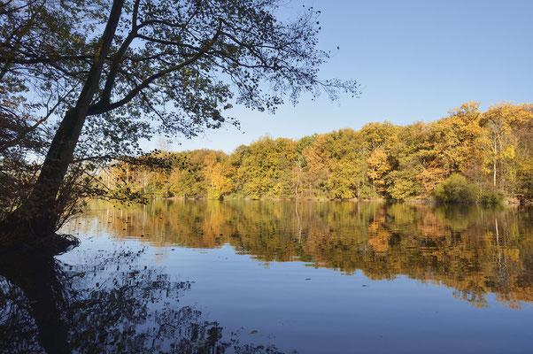 See im Herbst, Nordrhein-Westfalen / ch185263