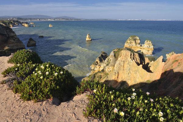 Algarve, Portugal / ch178695