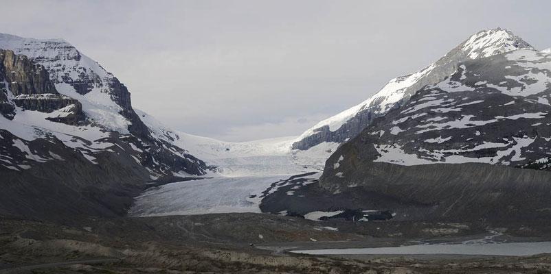 Athabasca Gletscher / ch157714