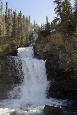 Tangle Falls / ch157709
