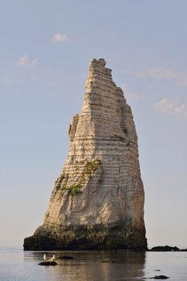 Normandie, Frankreich / ch149888