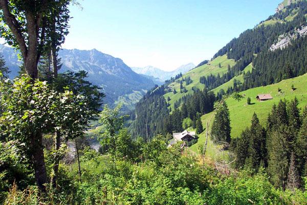 Wanderreise mit Gepäcktransport im Berner Oberland: Griesalp