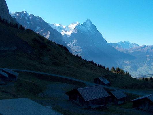 Weitwandern ohne Gepäck Bärentrek-Hintere Gasse Berner Oberland: Grosse Scheidegg