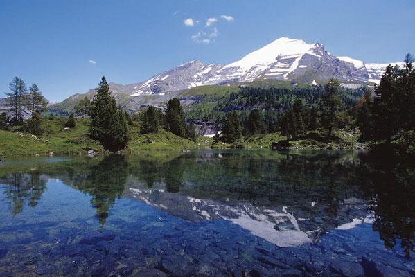 Wanderreise mit Gepäcktransport vom Berner Oberland ins Wallis: Arvenseeli