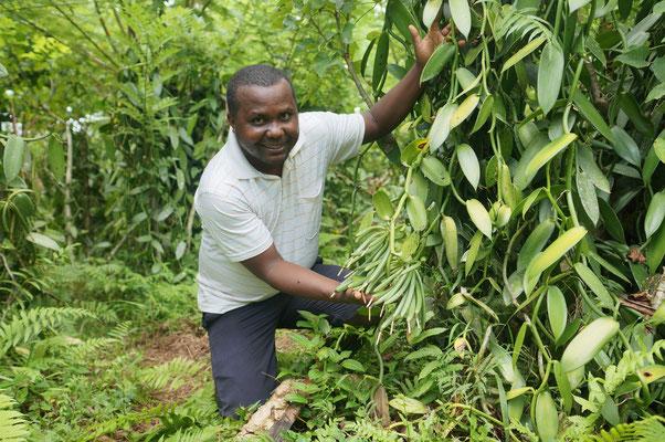 Dylan's Familie ist seit drei Generationen im Vanille-Anbau tätig