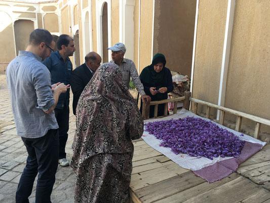 Amin und Dennis auf dem Safranmarkt
