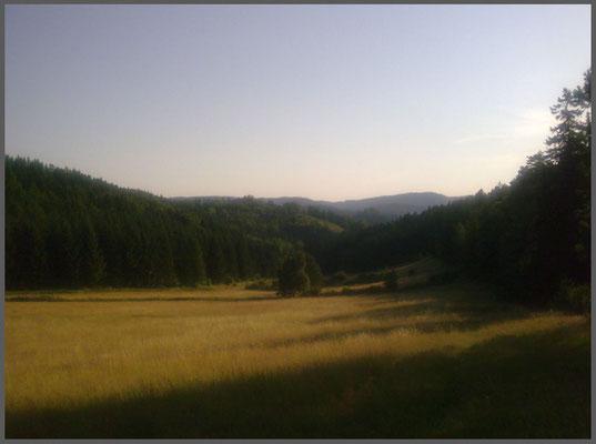 Harz bei Goslar 2012