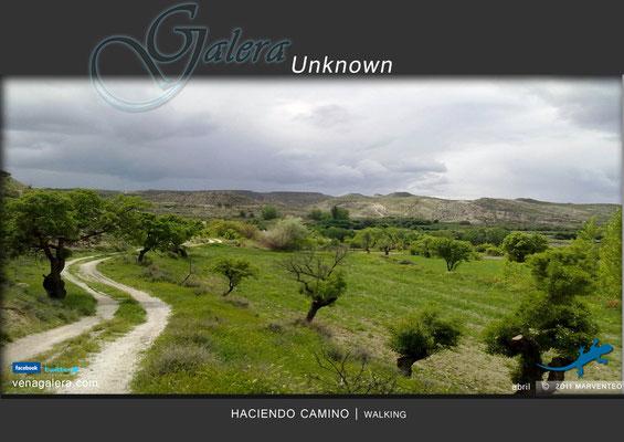 Haciendo camino (2011 Galera, Granada)