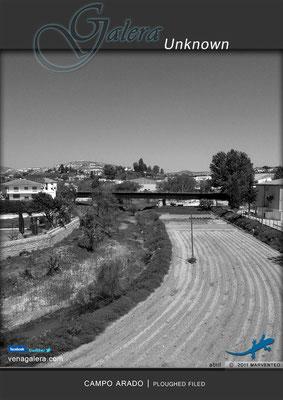 Campo arado (2011 Galera, Granada)