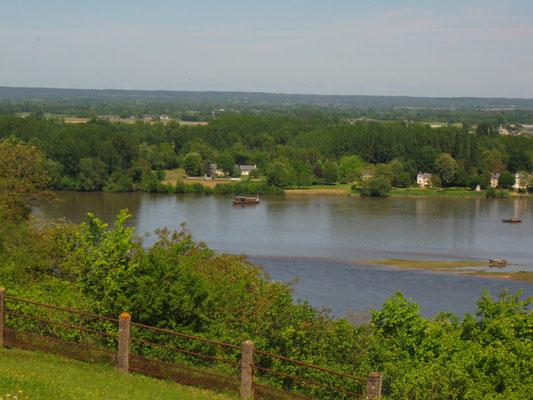 Einmündung der Venne in die Loire