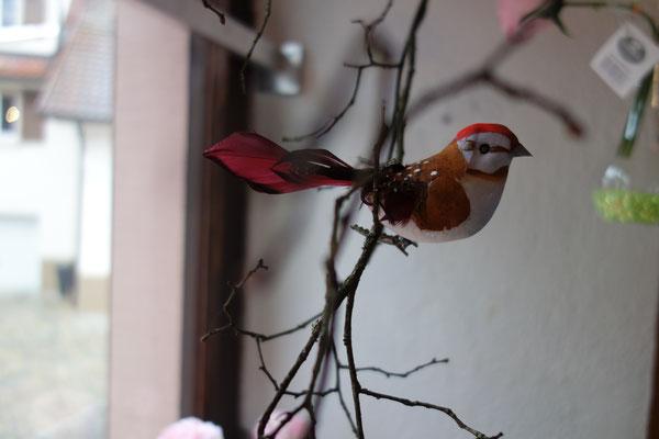 """Ein """"Vogel"""" zum Verlieben"""