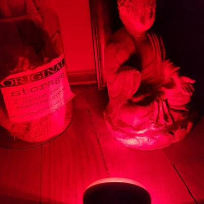 Rotlichlampe für Reptilien