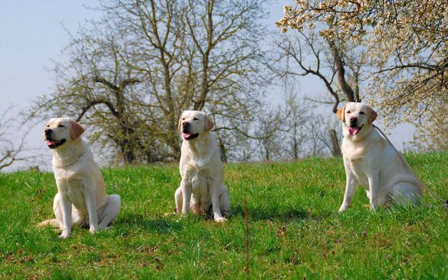 Hermine mit ihren beiden Mädchen