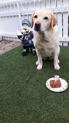 ....mit Geburtstagsmenue