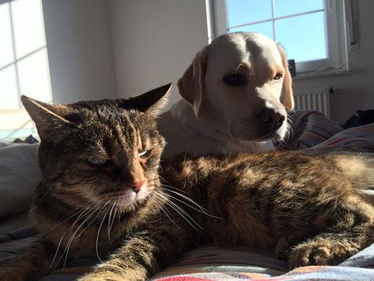Maja und Trixi