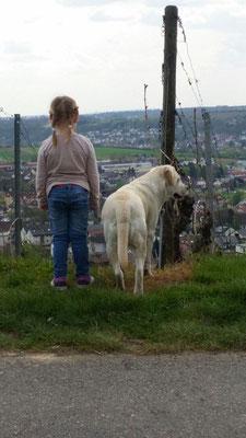 ....tierliebe vererbt sich irgendwie auch! :-)