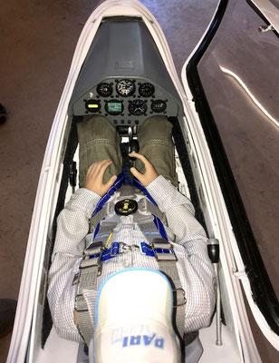 Detail Kabinenbereich mit Pilot und Sitzwanne sowie Instrumentenpilz