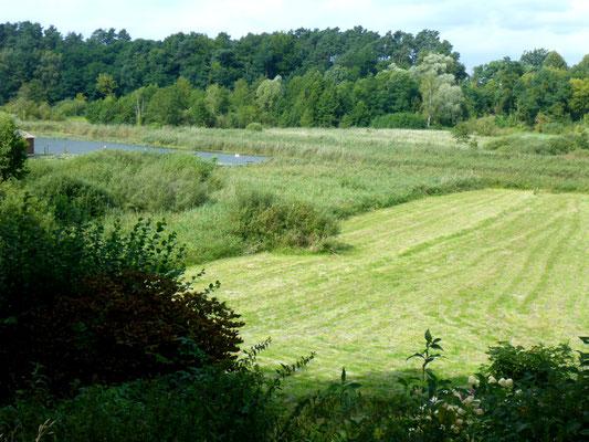 Aussicht von Wiesenhof Terrasse.