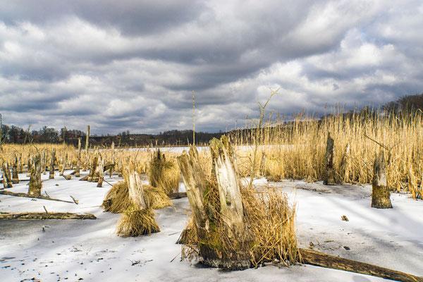 Winterlandschaft Uckermark (Foto: Heidrun Lorenz).