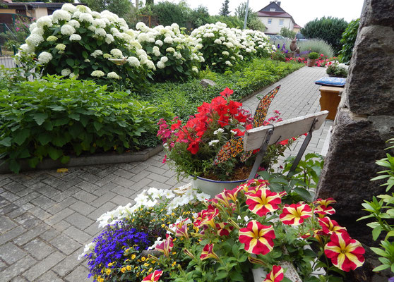 Blumenpracht im Sommer.