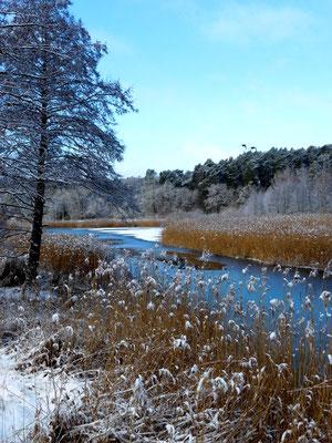 Blick von unserem Hochsitz auf den Kanal Winter 2021.