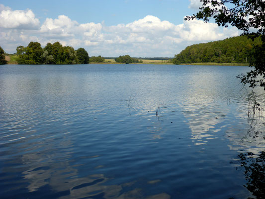 Haussee.