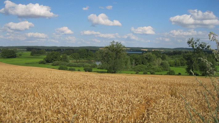 Landschaft Uckermark.