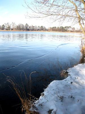 Röddelinsee im Winter.