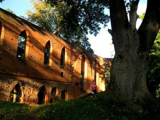 Mittelalterliche Klosterruine Boitzenburg.