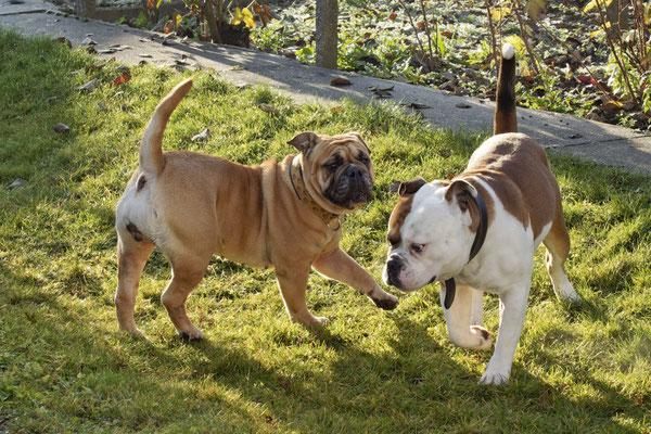 Fiona und Benjen