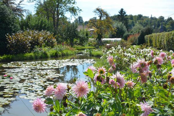 Accueil site de jardindubrule for Le jardin wine