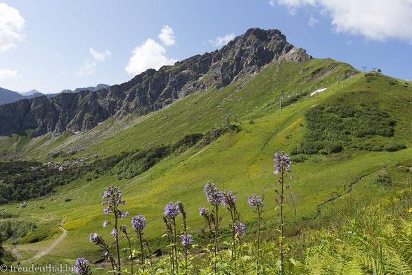 Panoramaweg zwischen Kanzelwand und Fellhorn