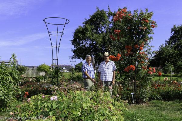 Im Rosengarten von Nöggenschwiel