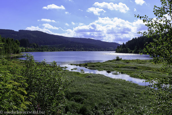 Blick über den Schluchsee