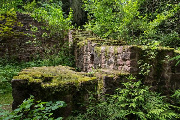 Burgruine bei Pfalzgrafenweiler