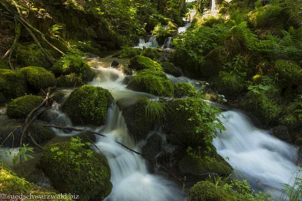 Buselbach oberhalb des Unteren Wasserfalls