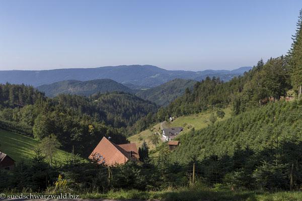 Schwarzwaldlandschaft bei Oppenau