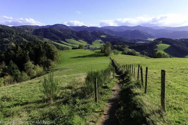 Blick vom Lindenberg über das Ibental