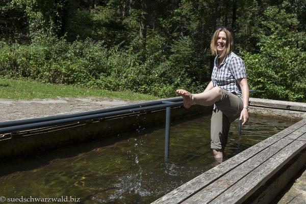 Erfrischende Wassertretanlage am Fremersberg