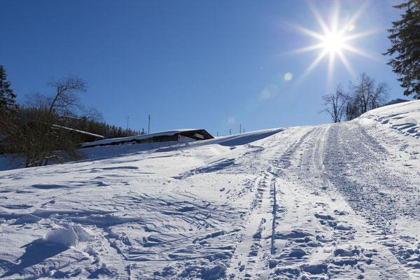 Aufstieg zur Krunkelbachhütte