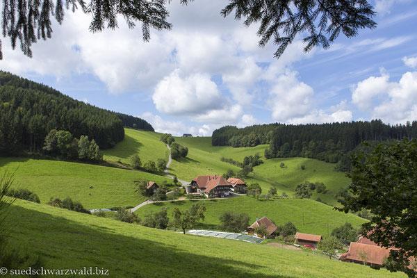 Ausblick über das Mühlenbacher Tal
