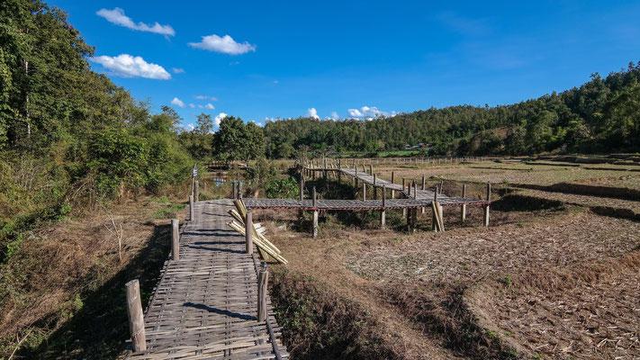 Bamboo Bridge und die umliegenden Reisfelder