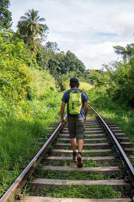 mal ein anderer Wanderweg - typisch für Sri Lanka, hier trifft man sich immer mal wieder auf den Geleisen.