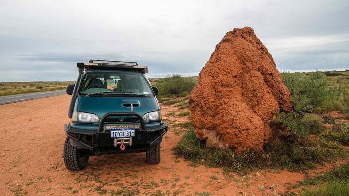 Termitenhügel grösser als unser Delica