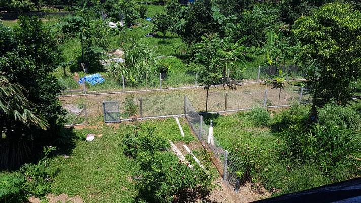 ...weitere ca. 100 Meter Zaun