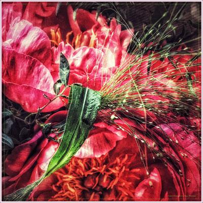 """Foulard soie """"Silvia's flowers"""" 130x130 cm"""