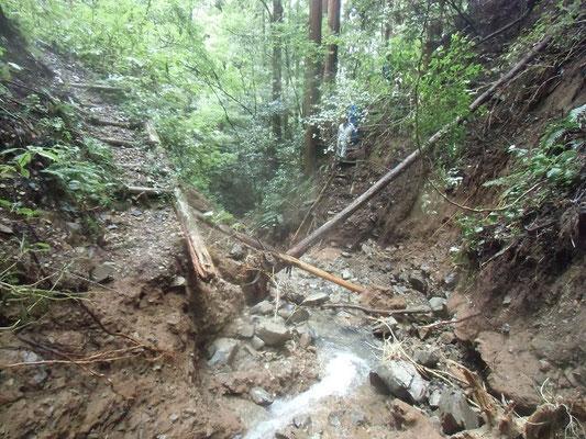 川床が侵食された西の谷渡り道の階段