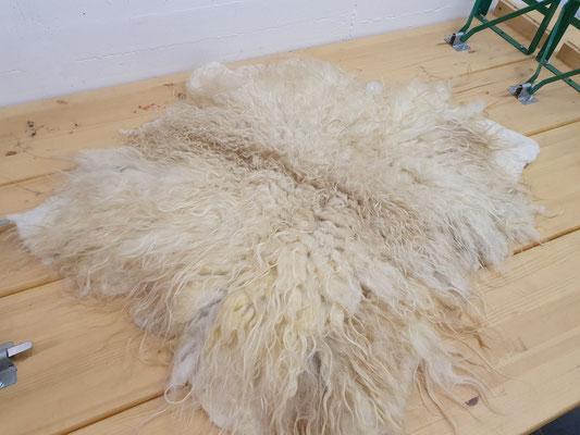 Zackelschaf Vlies aus 100% Wolle