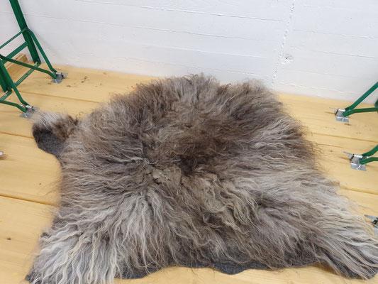 Ganzes gefilztes Schafsfell von der Skudde, 100% Wolle, Preis auf Anfrage.